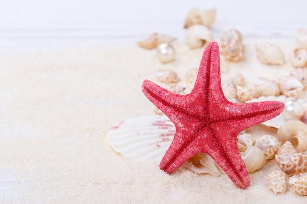 Starfish and sea shells Premium Photo