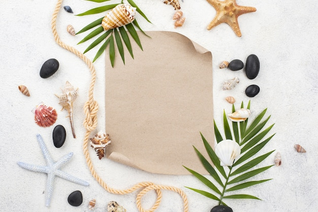 Starfishes and shells frame Free Photo