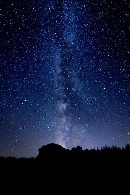 Starry night landscape Premium Photo