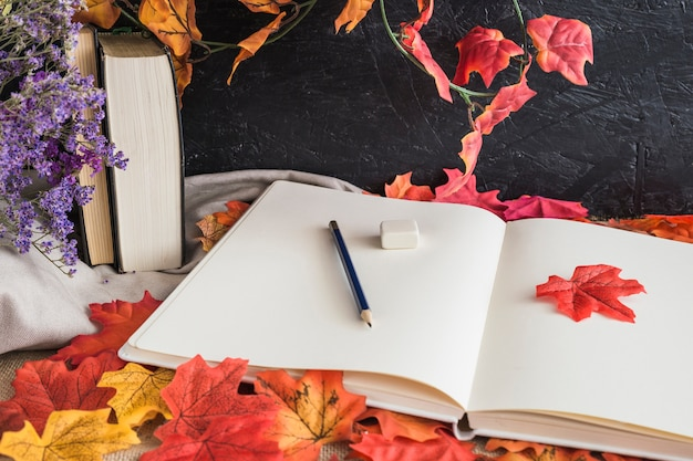 stationery and books on leaves photo free download