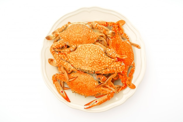 steamed-crabs-white-background_1232-3350.jpg (626×417)