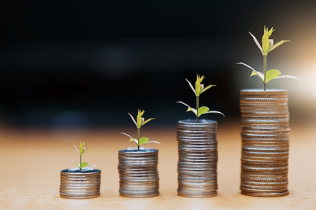 Step of coins stacks, money, saving and investment or family planning concept. Premium Photo