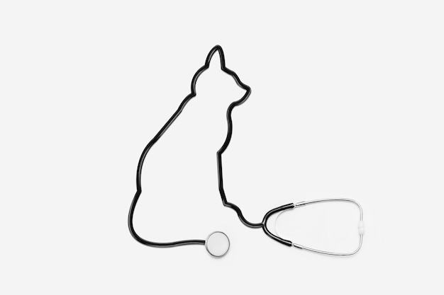 Stethoscope with cat outline tube Free Photo