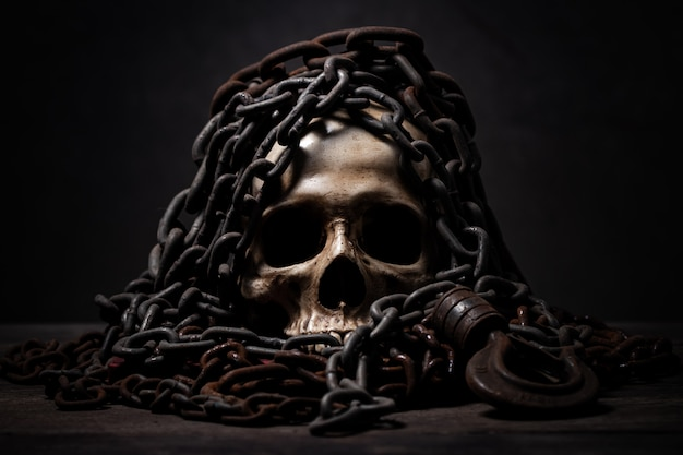 Still life of human skull that died for a long times Premium Photo