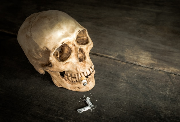 Still life skull of a skeleton with burning cigarette, stop smoking campaign concept with copy space. Premium Photo