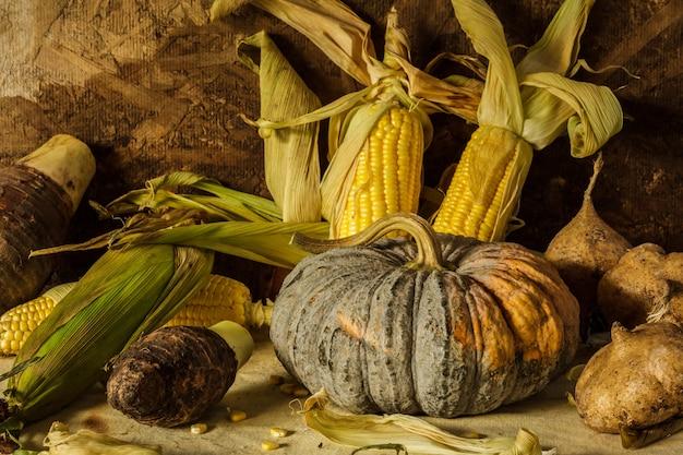 Still life with corn, pumpkin, taro and yam Premium Photo