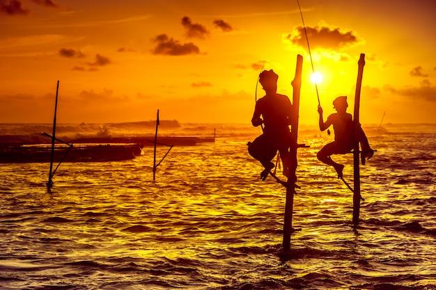 The stilt fishermen on the sunset Premium Photo