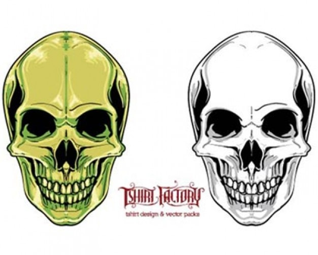 Stock Ilustration Skull 4 T-Shirt Factory