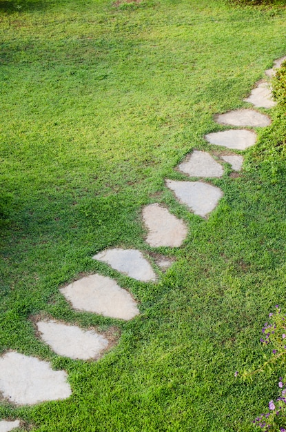 Stone path in garden among green lawn. grass growing up between and around stones. Premium Photo