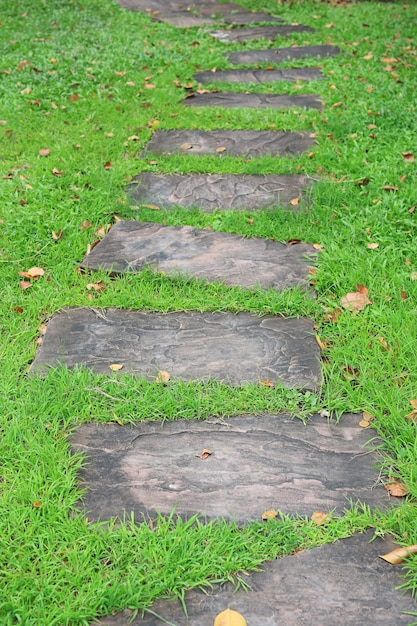 Stone pathway in the park with green grass background Premium Photo