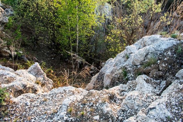 Stone rock texture Premium Photo