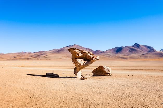 Stone tree, altiplano Premium Photo
