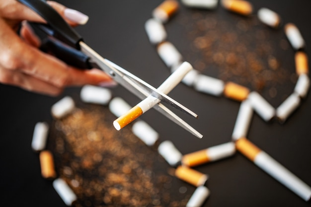 Stop smoking concept with broken cigarettes. heap of cigarettes. no smoking Premium Photo