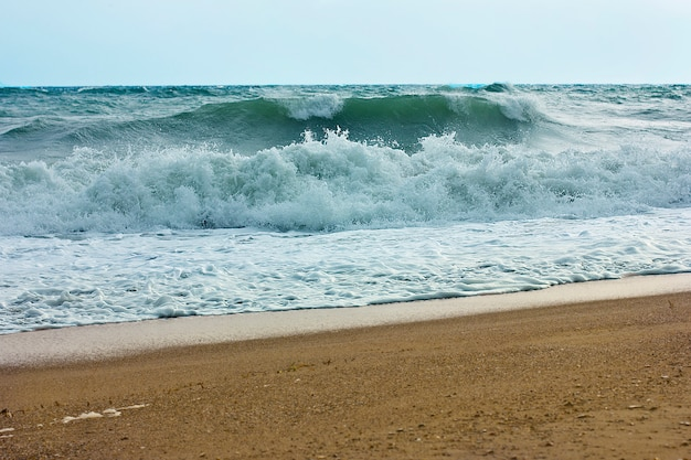 Stormy sea and blue sky, white sea foam on a yellow sandy beach. Premium Photo