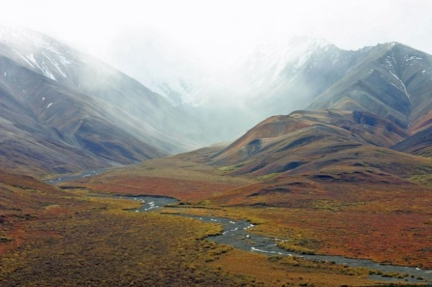 Stream mountains tundra wilderness alaska Free Photo