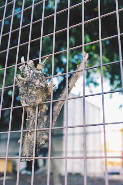 Застрявшая концепция. кусок ветки дерева застрял на стальной проволочной сетке. Premium Фотографии
