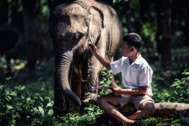 Student little asian boy with him elephant, countryside in thailand Premium Photo
