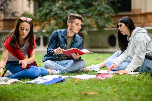 草の上に座って公園で一緒に勉強している学生 Premium写真