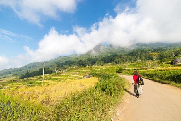Stunning rice paddies exploration Premium Photo