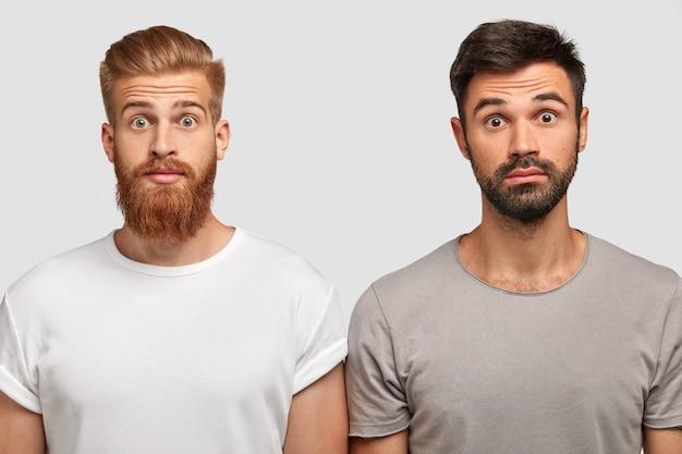 友人が高価な車を買ったことに驚いた、馬鹿げた感情的な若いひげを生やした男たち。愚かな表情の生姜男と弟が白い壁に向かってポーズをとる。 omgのコンセプト 無料写真