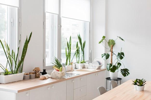 Стильная минималистичная кухня с растениями Бесплатные Фотографии