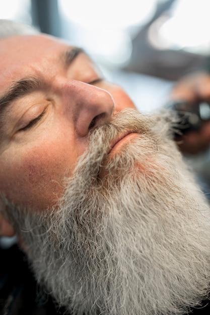Stylish senior man face with well groomed long beard Free Photo