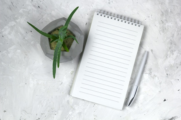 Succulent in a concrete pot and opened notebook with empty sheet mock up Premium Photo