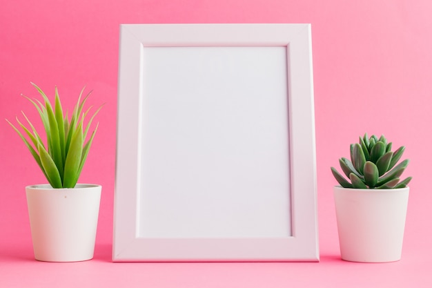 Succulent plants on pastel pink . flat lay. Premium Photo