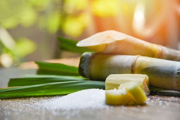 Sugar and sugar cane on wooden  table and nature Premium Photo