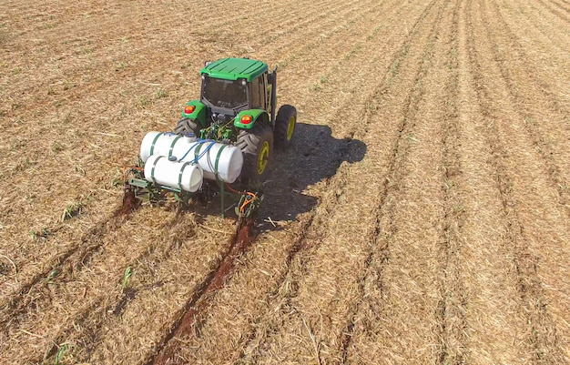 Sugarcane planting by applying fertilizer and insecticides with tractor Premium Photo
