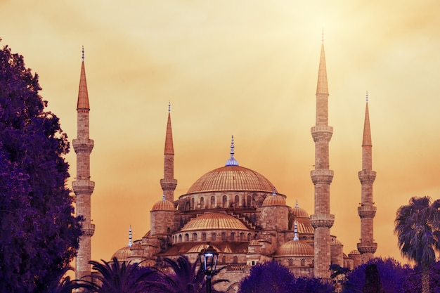 Sultan ahmed mosque or blue mosque Premium Photo