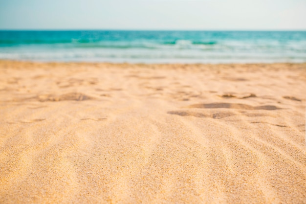 Summer beach composition for background Free Photo