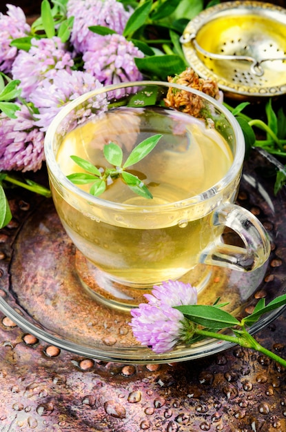 Summer herbal tea with clover Premium Photo