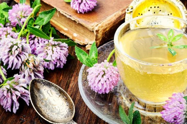 Summer herbal tea with clover Premium Photo