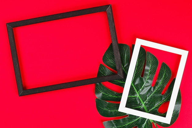 Summer ideas concept tropical leaf white black frame border on red background, top view copy space Premium Photo