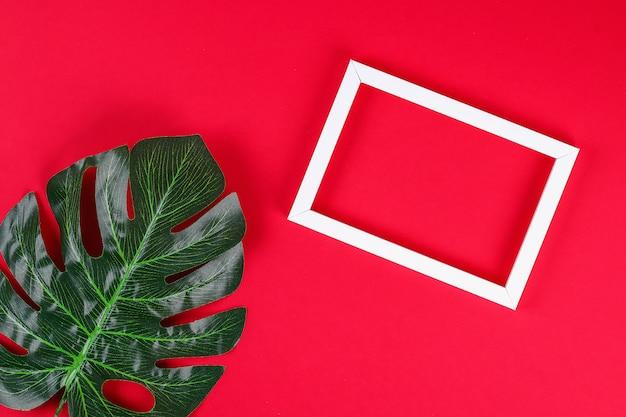 Summer ideas concept tropical leaf white black frame border on red background Premium Photo