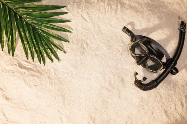 Summer layout of palm tree leaf and swimming mask Free Photo