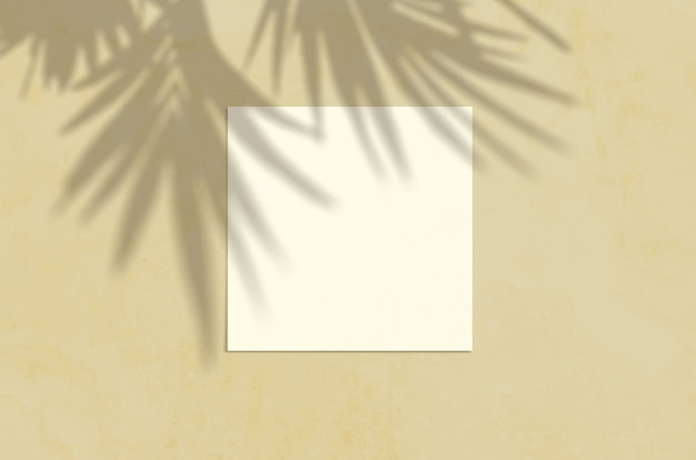 Summer modern sunlight stationery mockup scene. flat lay top view blank greeting card with palm leaf and branches shadow overlay on grunge sand background. Premium Photo