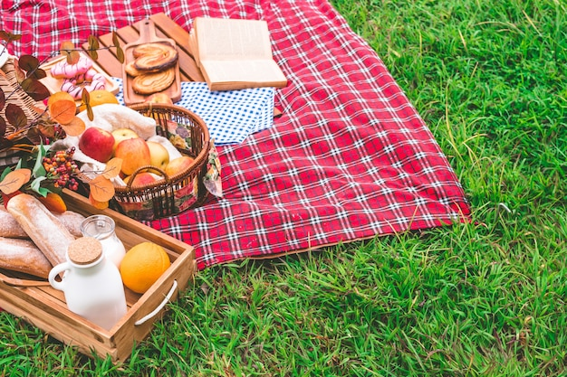 Summer picnic with a basket of food on blanket in the park. free space for text Premium Photo