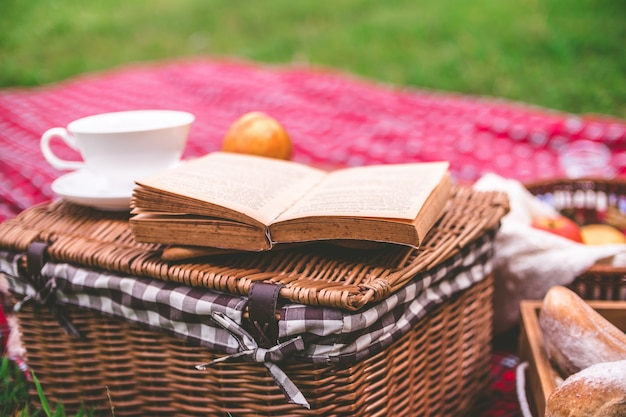 Summer picnic with book and food on wicker basket in the park. Premium Photo