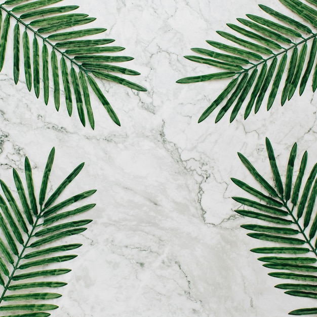 Summer plants with copy space on marble background. Free Photo