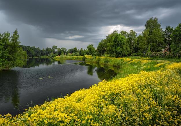 川と黄色い花のある夏の雷のような風景 Premium写真