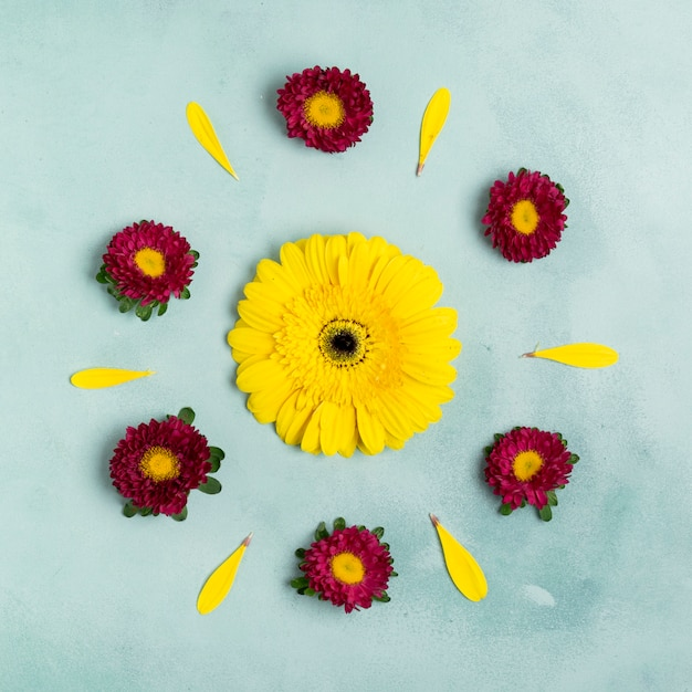 Sunflower and daisies cute arrangement top view Free Photo