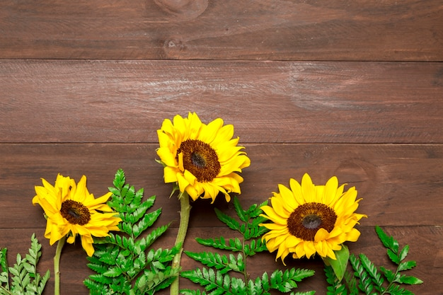 Sunflowers and fern leaves on wooden background Free Photo