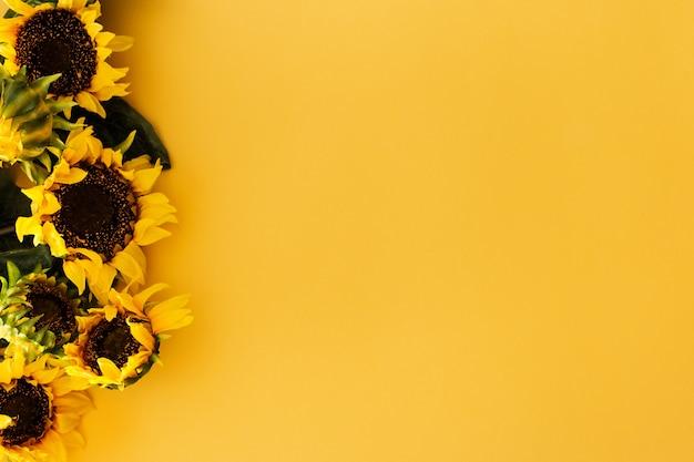 Подсолнухи на желтом Бесплатные Фотографии