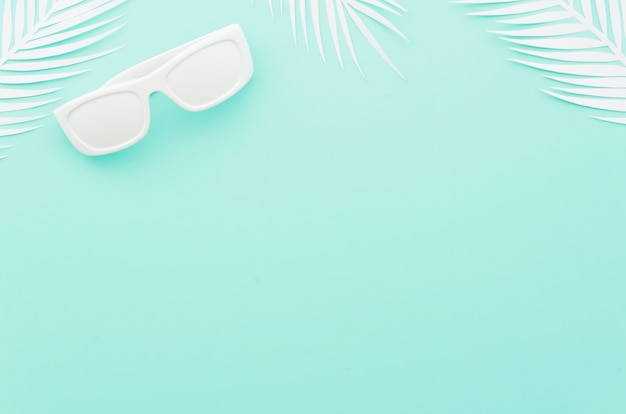Sunglasses with white palm leaves Free Photo