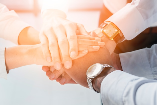 Sunlight falling over the stacked of business people's hand Free Photo
