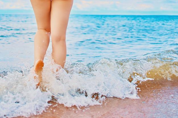 Sunny day on the beach Premium Photo