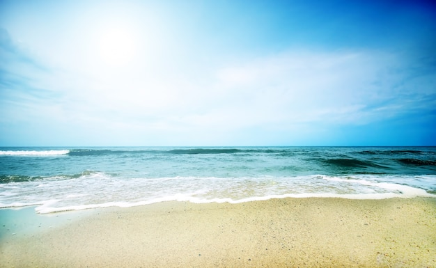 Sunny day with sea background Free Photo