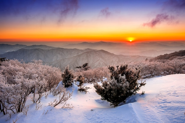 Sunrise on deogyusan mountains covered with snow in winter,south korea Free Photo
